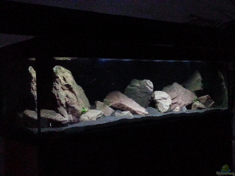 aquarium von j malawibecken einrichtungsbeispiele. Black Bedroom Furniture Sets. Home Design Ideas
