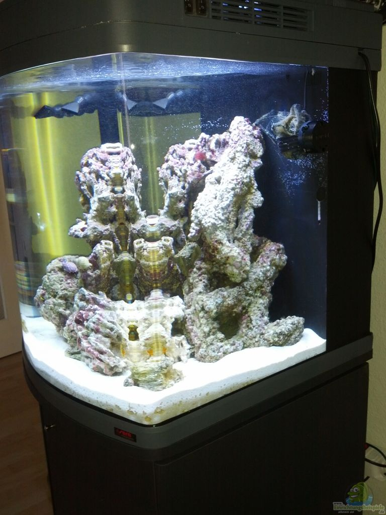 aquarium von kingtritonbs sera marin led 130. Black Bedroom Furniture Sets. Home Design Ideas