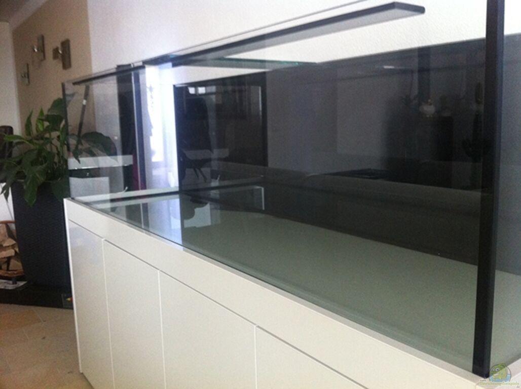 aquarium von axxo malawi. Black Bedroom Furniture Sets. Home Design Ideas