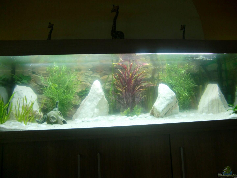 Aquarium von waldemar oswald becken 26600 for Aquarium becken