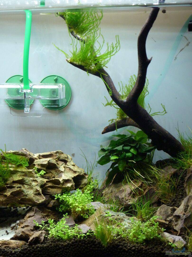 aquarium fels in der brandung besteht so nicht mehr aus fels in der brandung besteht so nicht. Black Bedroom Furniture Sets. Home Design Ideas