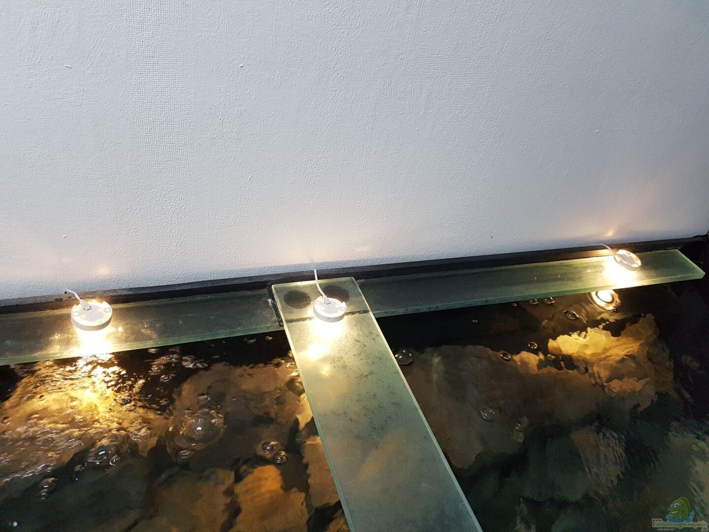 aquarium von thomas0902 becken 27266. Black Bedroom Furniture Sets. Home Design Ideas