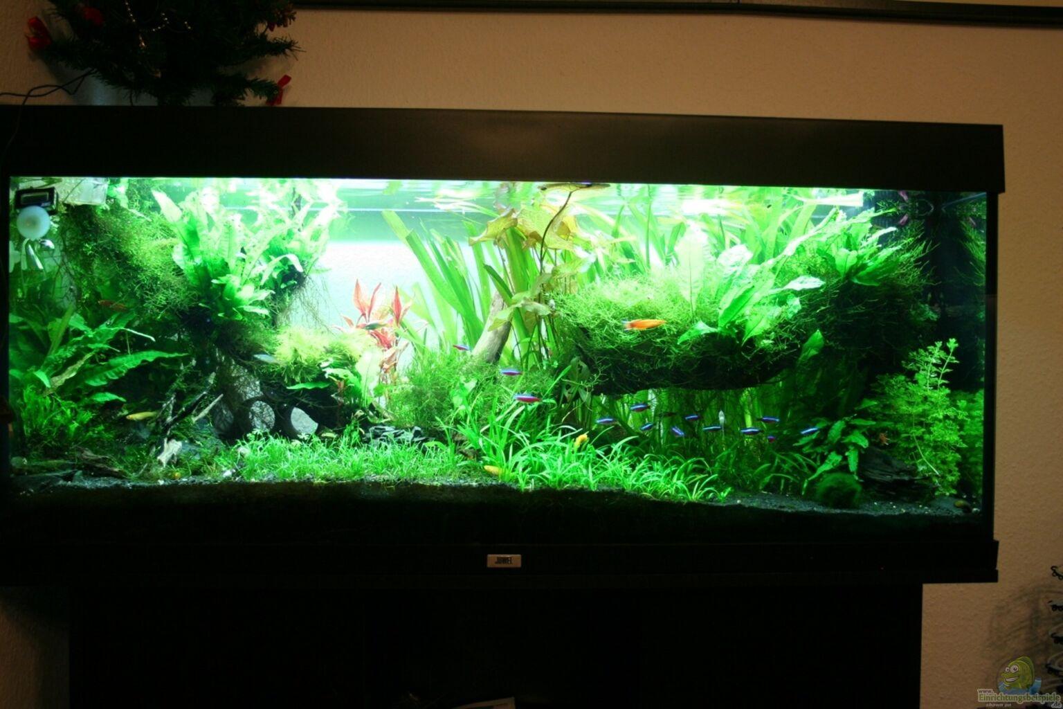 Aquarium von liwebe 350 liter k che for Aquarium 350 litres