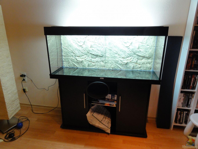 aquarium von daking asizonas rio240. Black Bedroom Furniture Sets. Home Design Ideas