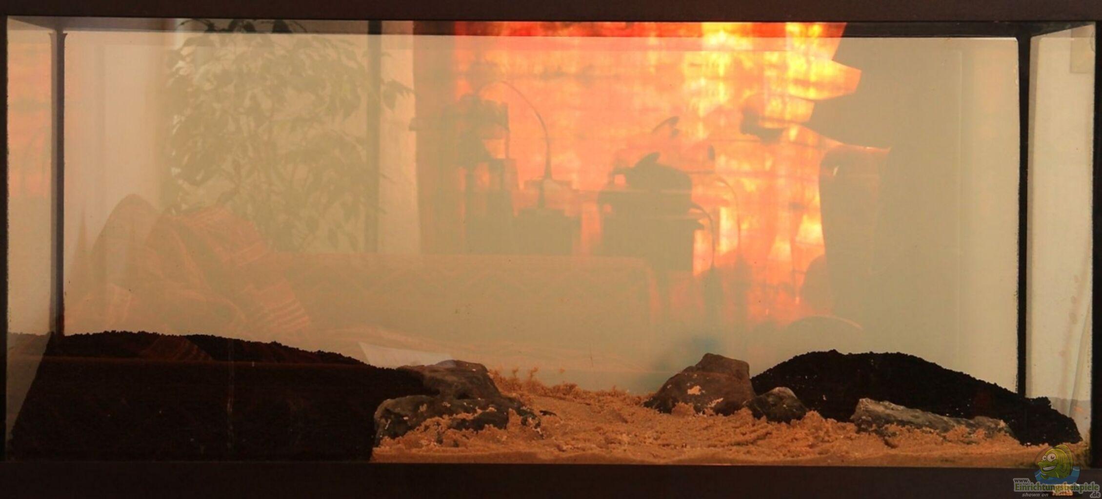 Flaming hot slot machine