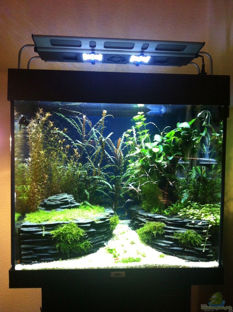 aquarium von l tlampenindianer 27636 wohnraum. Black Bedroom Furniture Sets. Home Design Ideas