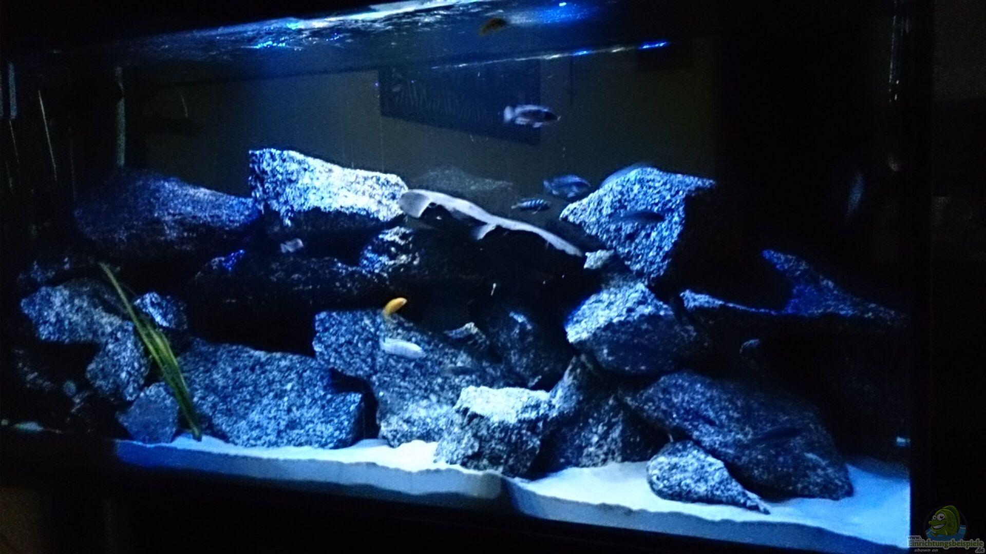 Aquarium von florian suft becken 28016 for Aquarium becken
