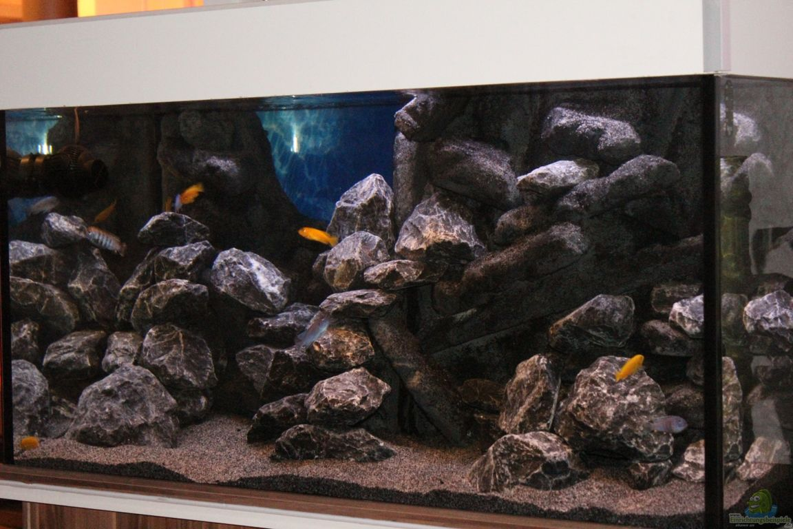 beautiful deko fur aquarium selber machen pictures - house design