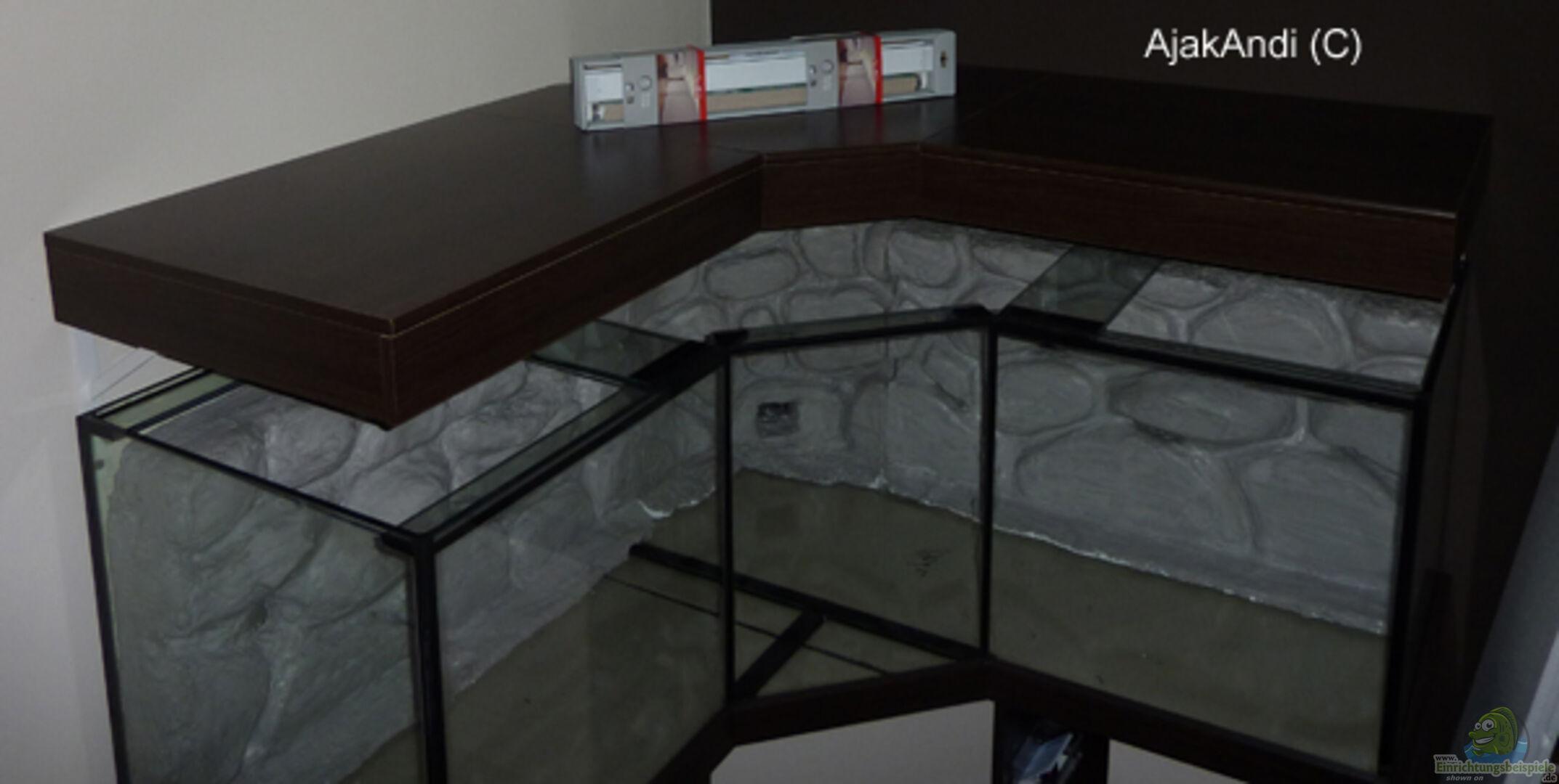 aquarium von ajakandi 28136 corner reef aufgel st. Black Bedroom Furniture Sets. Home Design Ideas