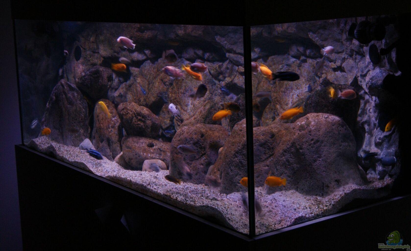 aquarium von tom mbunaaquarium 672 liter. Black Bedroom Furniture Sets. Home Design Ideas