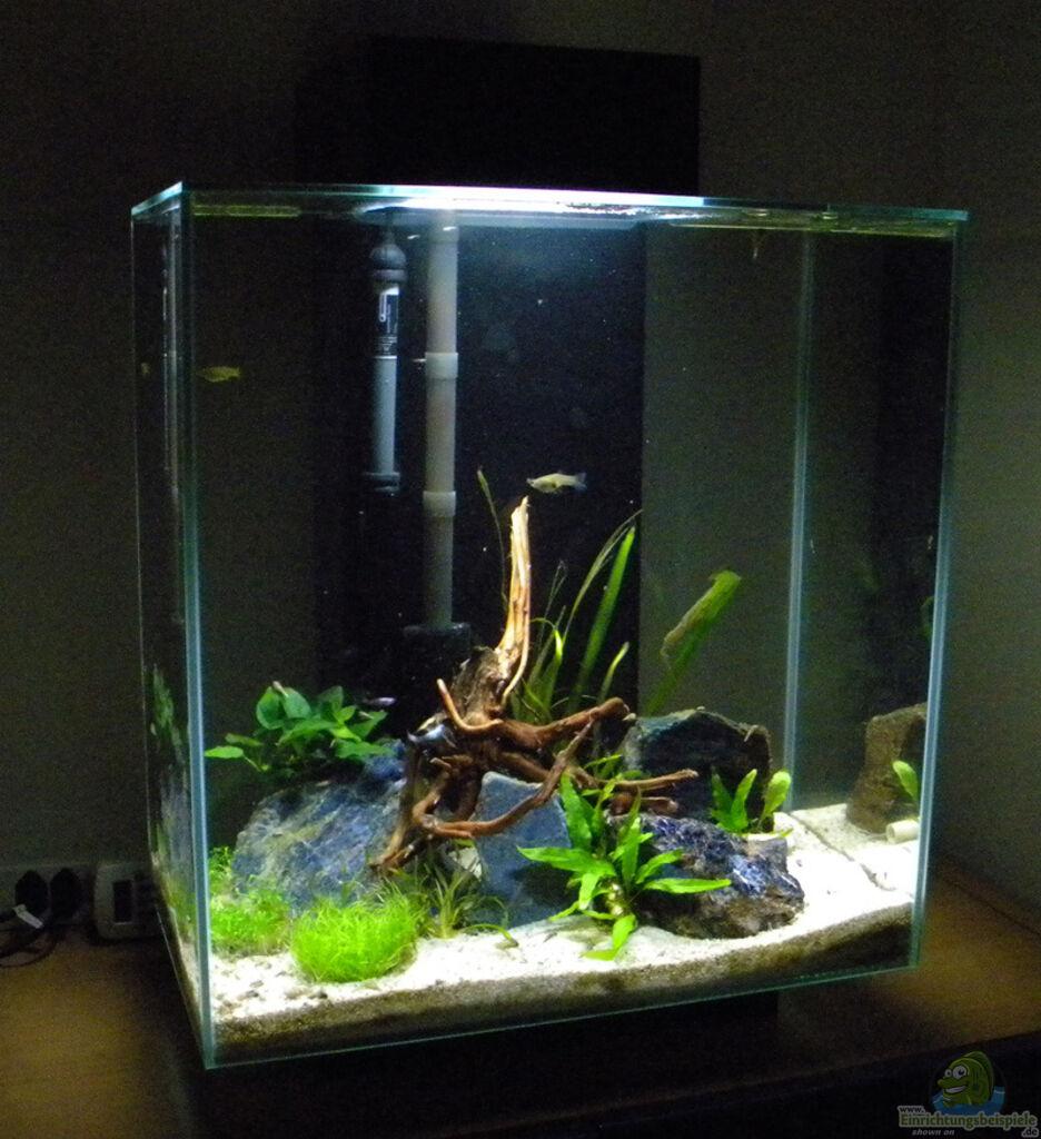 aquarium von flightsim nano fluval edge ii. Black Bedroom Furniture Sets. Home Design Ideas
