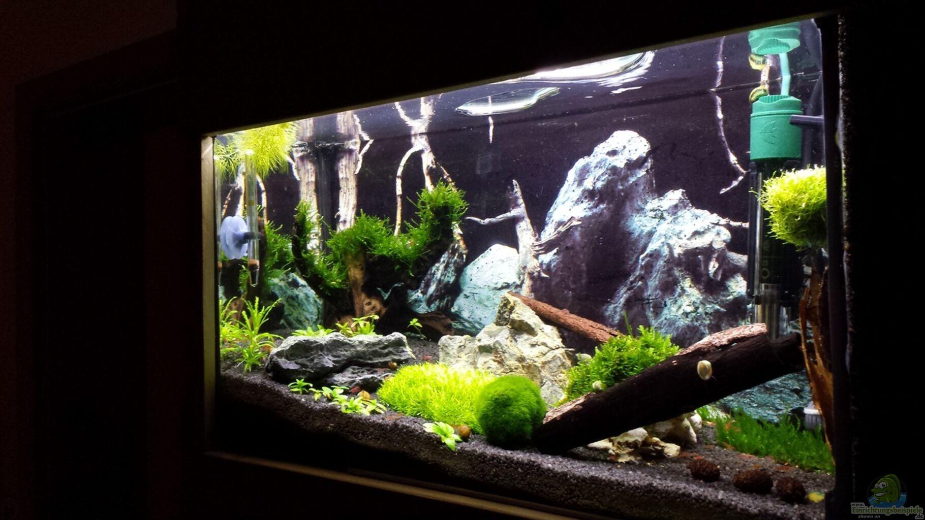 aquarium von lucky3310 nano eigenbau. Black Bedroom Furniture Sets. Home Design Ideas