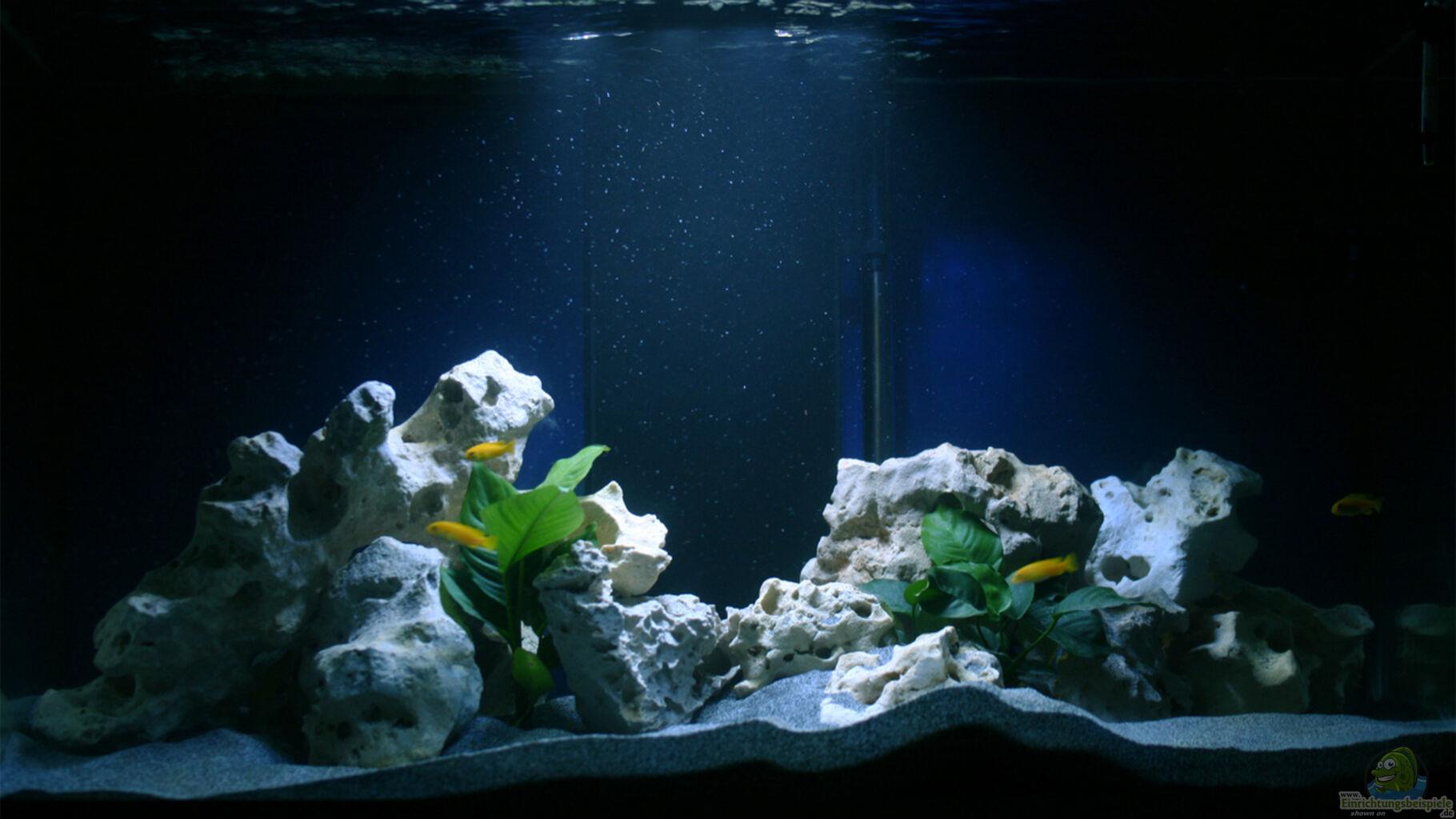 aquarium von mawil malawidream. Black Bedroom Furniture Sets. Home Design Ideas
