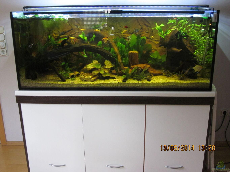 Nett tisch aquarium guenstig ideen die besten wohnideen for Koinor fabrikverkauf
