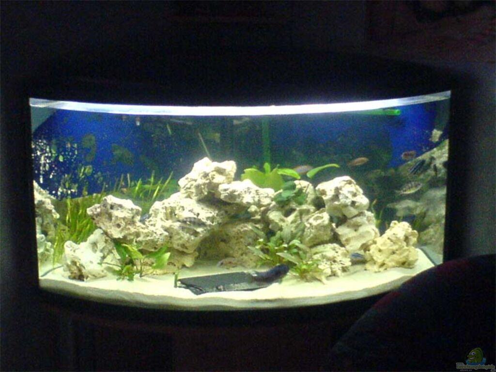 aquarium von dominik geissert becken 3024. Black Bedroom Furniture Sets. Home Design Ideas