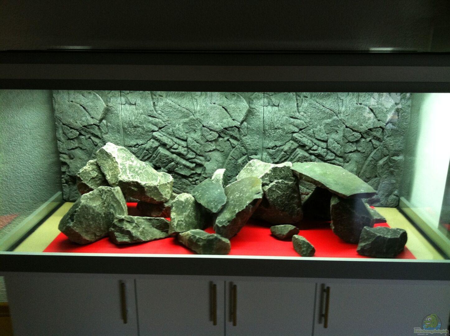 aquarium von mikegarten007 30265 malawi becken. Black Bedroom Furniture Sets. Home Design Ideas