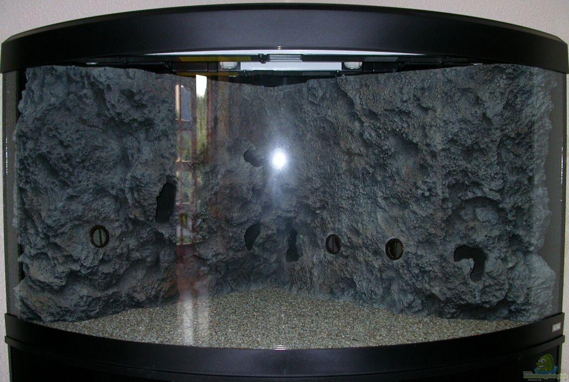 aquarium von harald g tz blue neon multi co. Black Bedroom Furniture Sets. Home Design Ideas