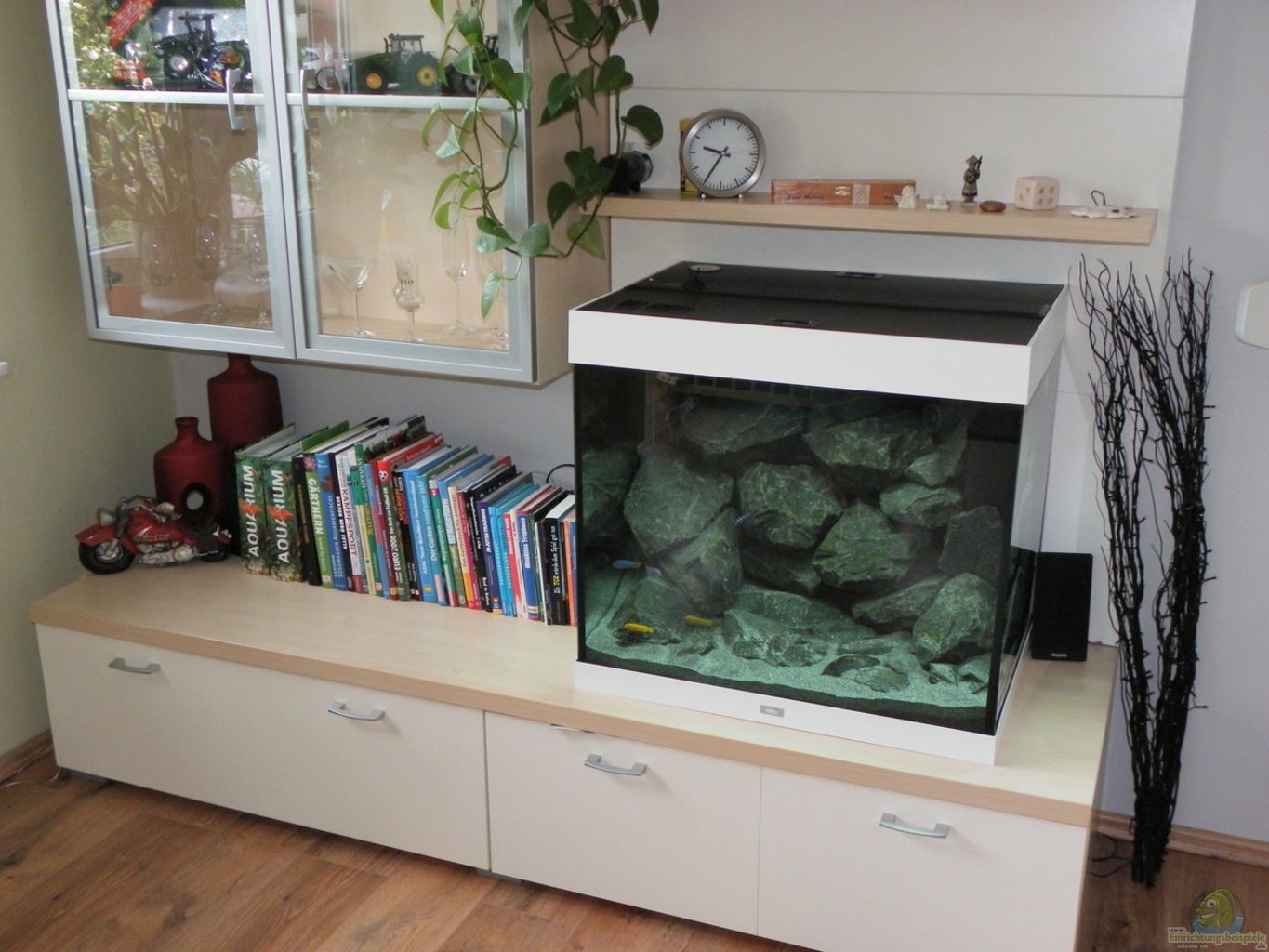 Meuble Tv Aquarium Gallery Of Meuble Duaquarium Aquavie Startup  # Aquarium Meuble Tv