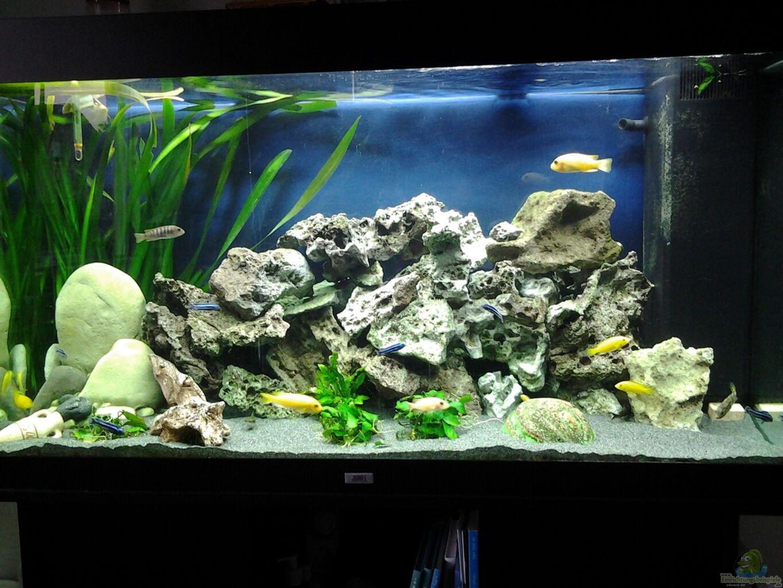 aquarium einrichten beispiele nano aquarium einrichten. Black Bedroom Furniture Sets. Home Design Ideas