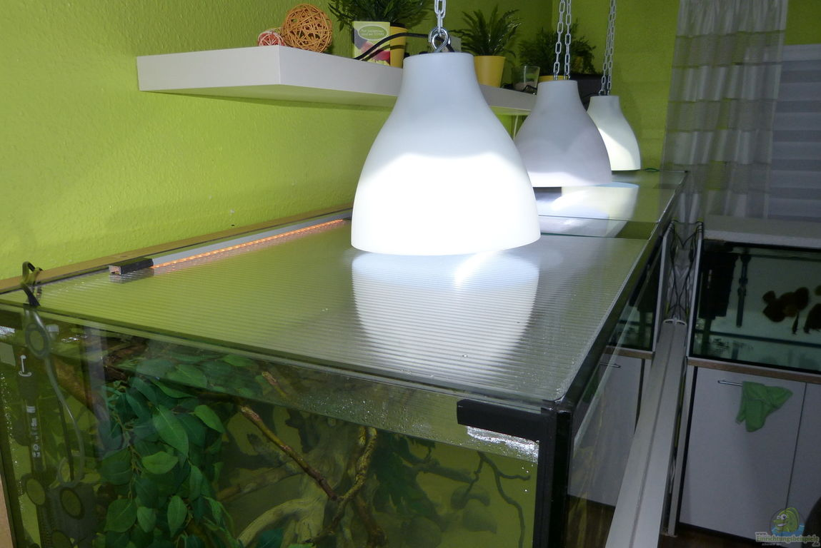 einrichtungsbeispiele mit led beleuchtung. Black Bedroom Furniture Sets. Home Design Ideas