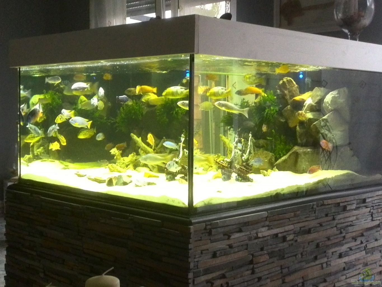 aquarium von frank lefers becken 31073. Black Bedroom Furniture Sets. Home Design Ideas