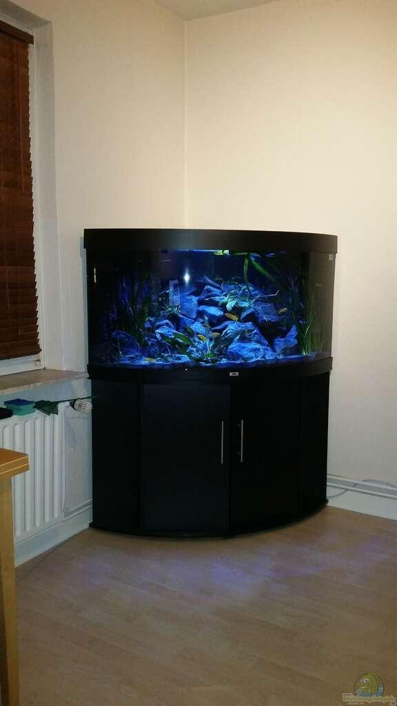 bersicht ber die aquariumbilder aus den beispielen seite 122. Black Bedroom Furniture Sets. Home Design Ideas