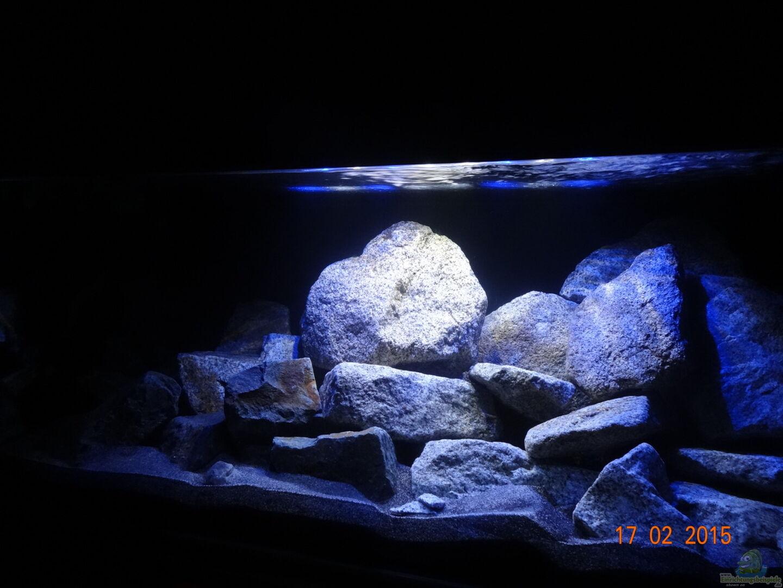 Aquarium von malawi einsteiger 31452 mbuna hardscape for Aquarium einsteiger
