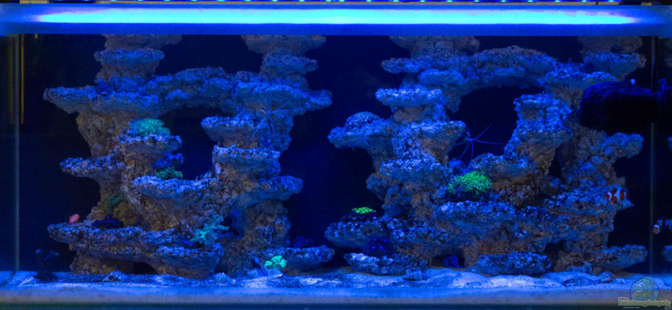 Aquarium Fluval M90 - nur mit Riffkeramik aus Fluval M90