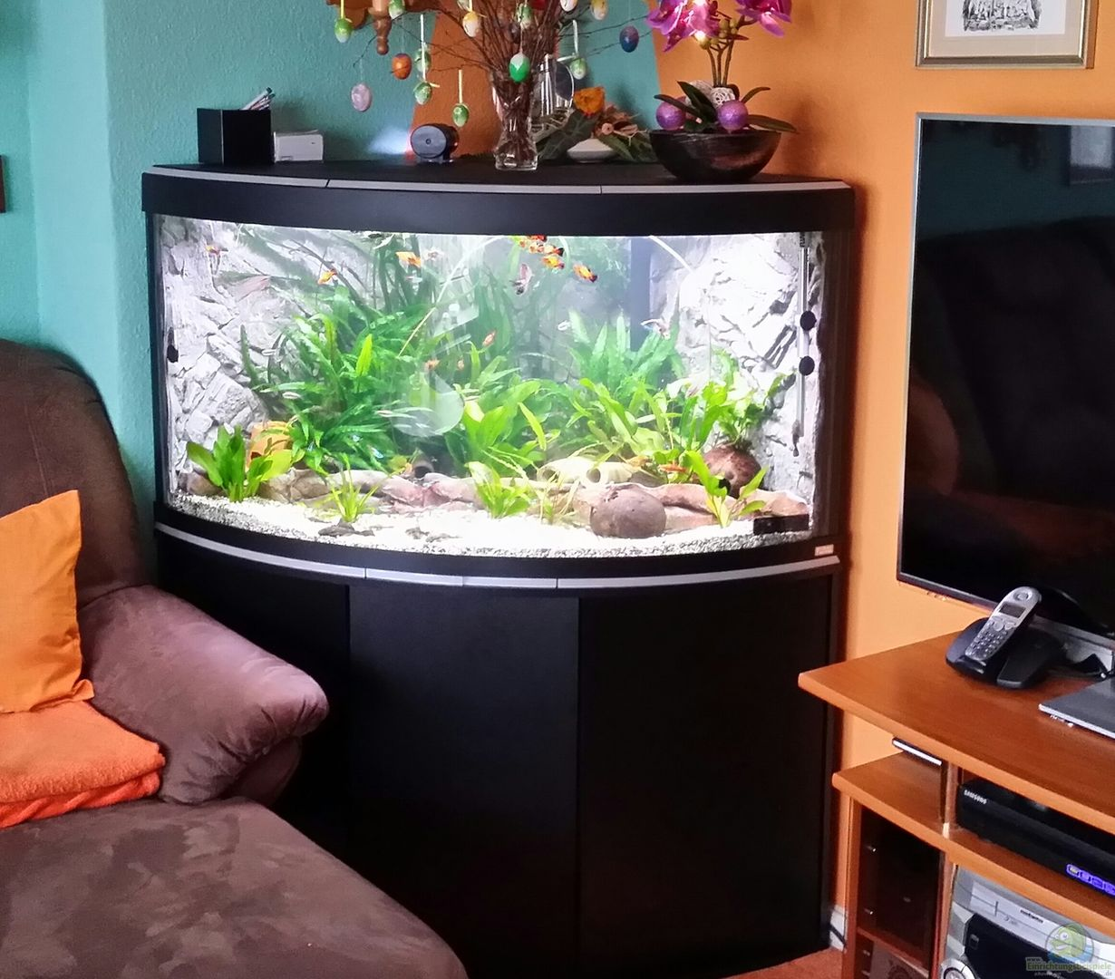steffen und felix 31579 fluval venezia 350 eckaquarium. Black Bedroom Furniture Sets. Home Design Ideas