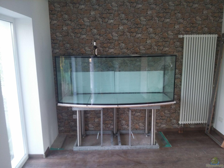 Aquarium von oliver boden becken 31764 for Boden aquarium
