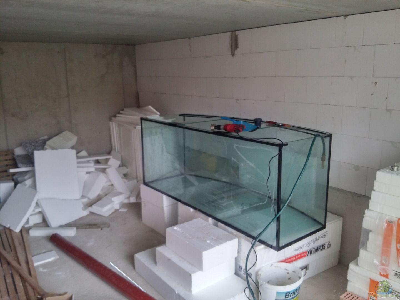 bersicht ber die aquariumbilder aus den beispielen seite 117. Black Bedroom Furniture Sets. Home Design Ideas
