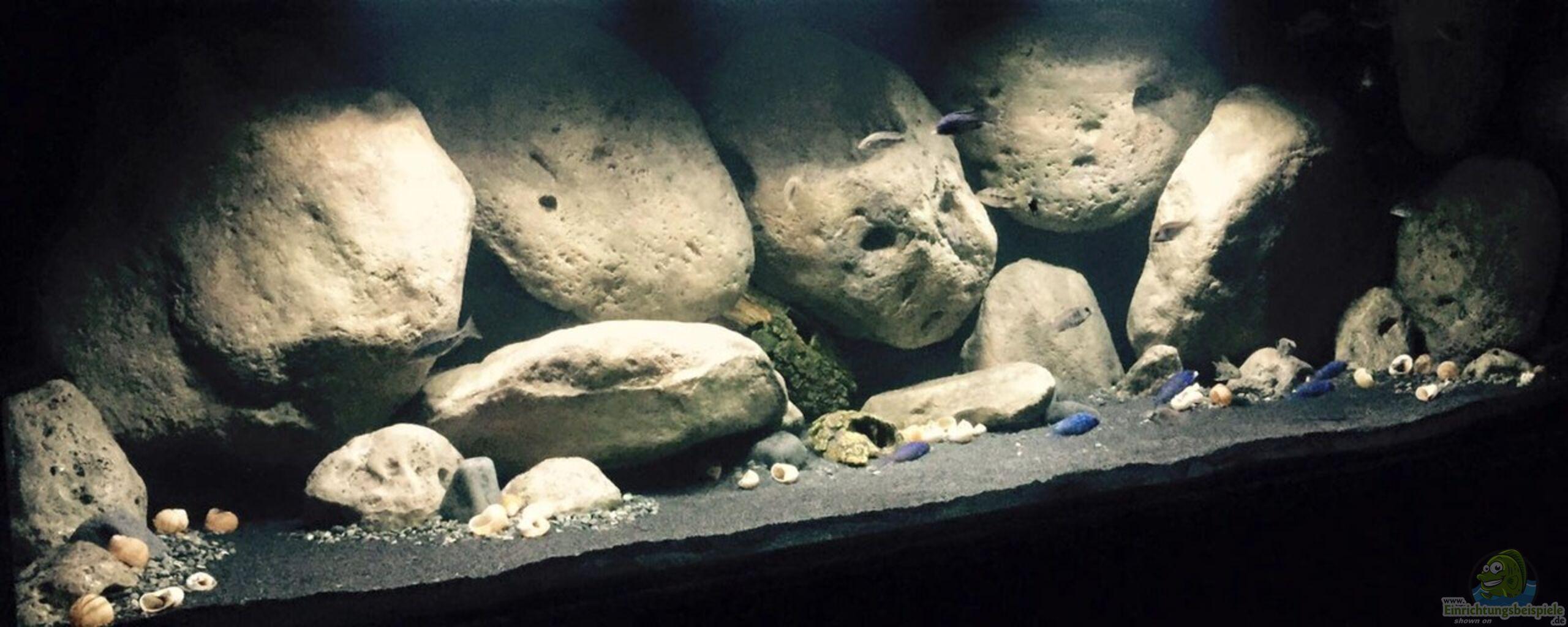 aquarium von thetoxicavenger mdima mchenga. Black Bedroom Furniture Sets. Home Design Ideas