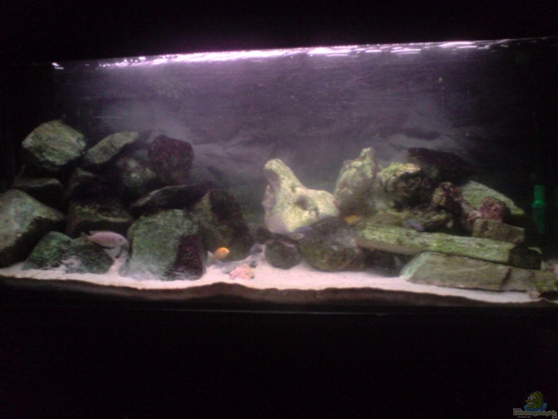 Aquarium von michael kaltenbach becken 3195 for Aquarium 120x40x50