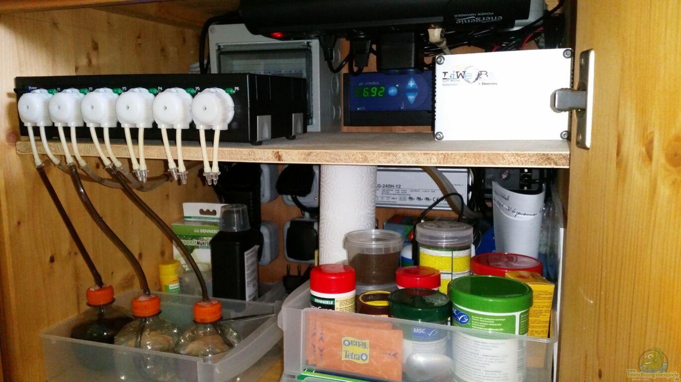 aquarien mit produkten von liwebe. Black Bedroom Furniture Sets. Home Design Ideas