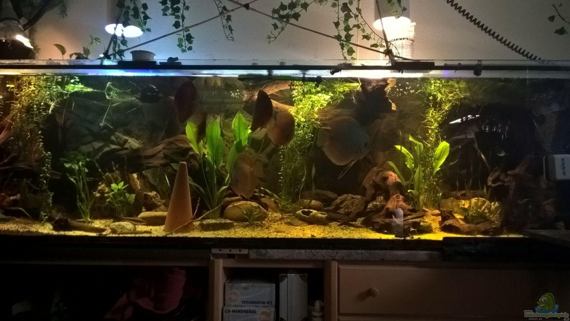 aquarium von lars 300l 1 32044 lars 900l. Black Bedroom Furniture Sets. Home Design Ideas