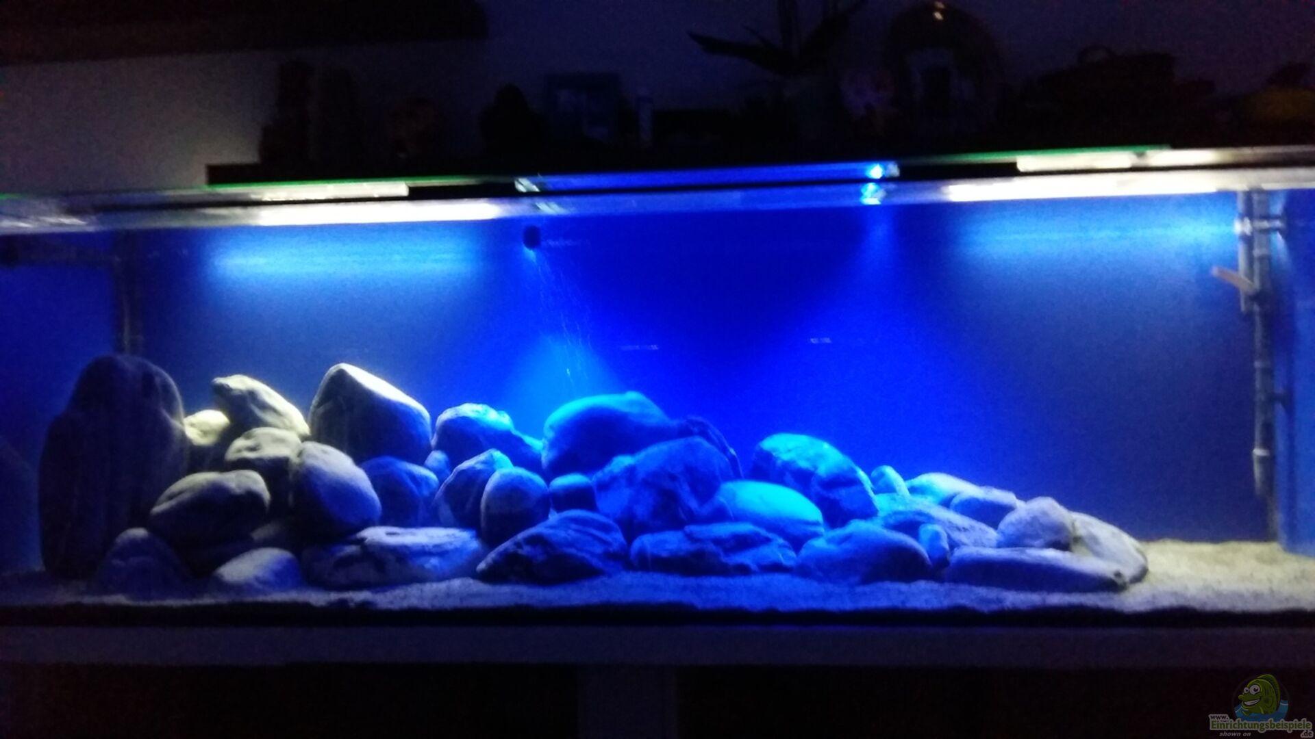 Aquarium von sit82 becken 32056 for Aquarium becken
