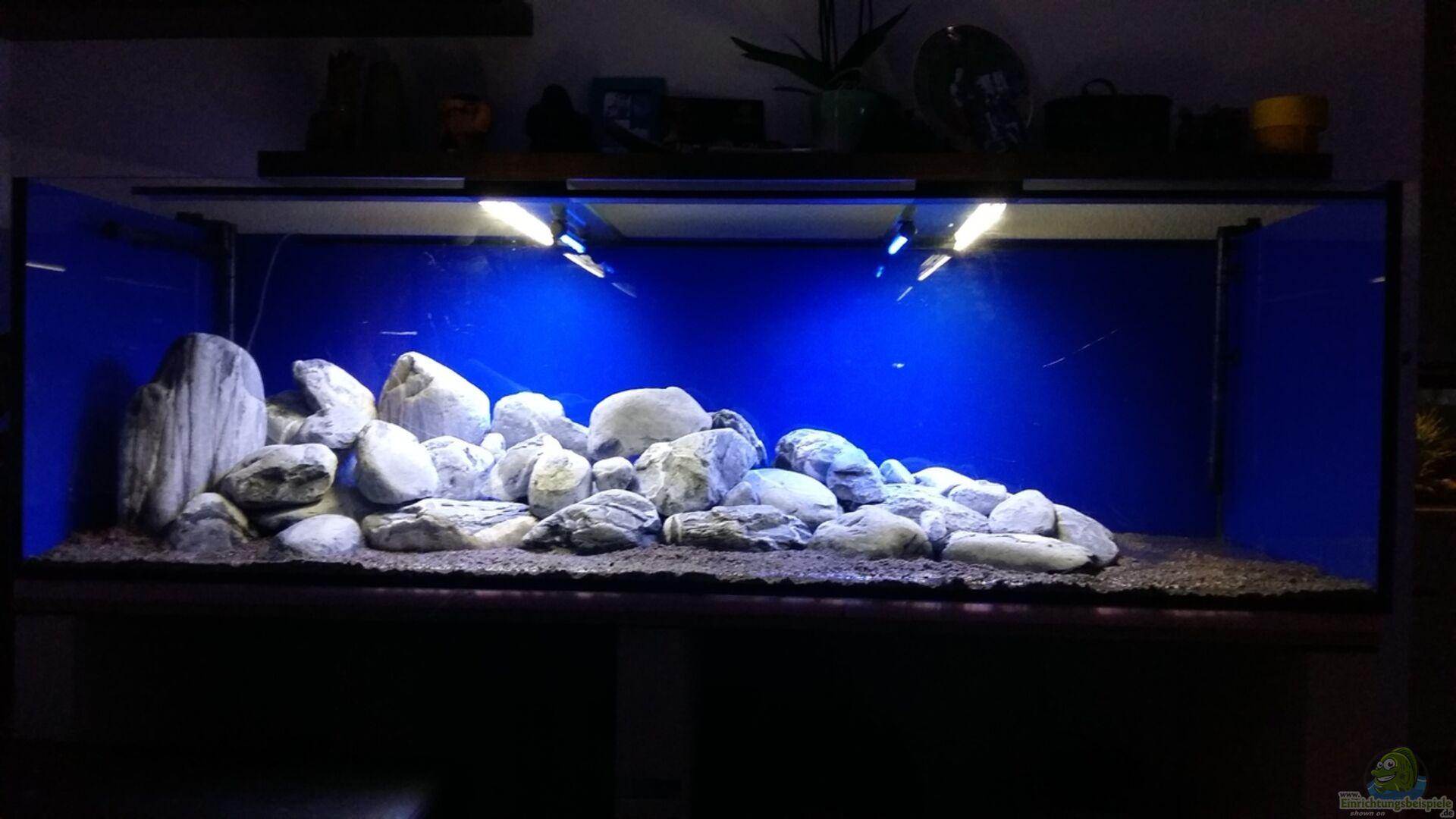 aquarium von sit82 becken 32056. Black Bedroom Furniture Sets. Home Design Ideas