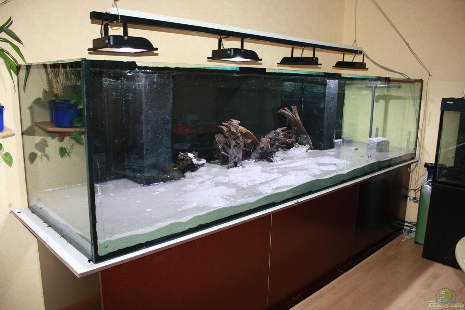 aquarium von fishers friend 32111 kuno s traum. Black Bedroom Furniture Sets. Home Design Ideas
