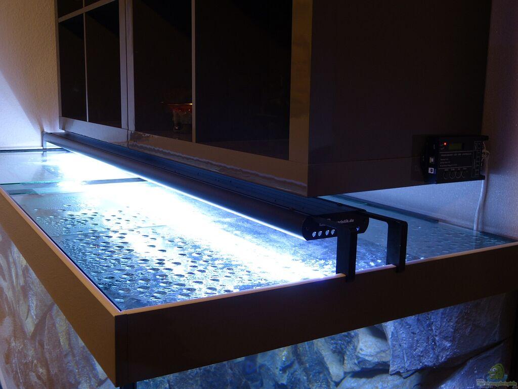 aquarien mit produkten von. Black Bedroom Furniture Sets. Home Design Ideas