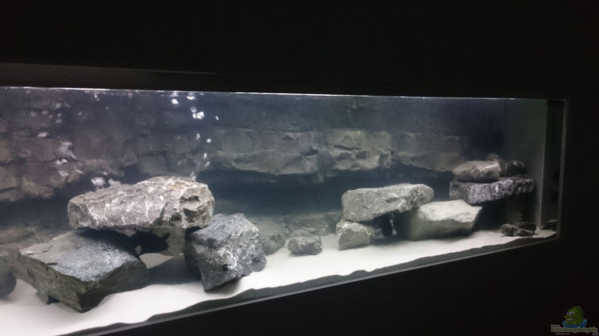 aquarium von jens teichert becken 32521. Black Bedroom Furniture Sets. Home Design Ideas