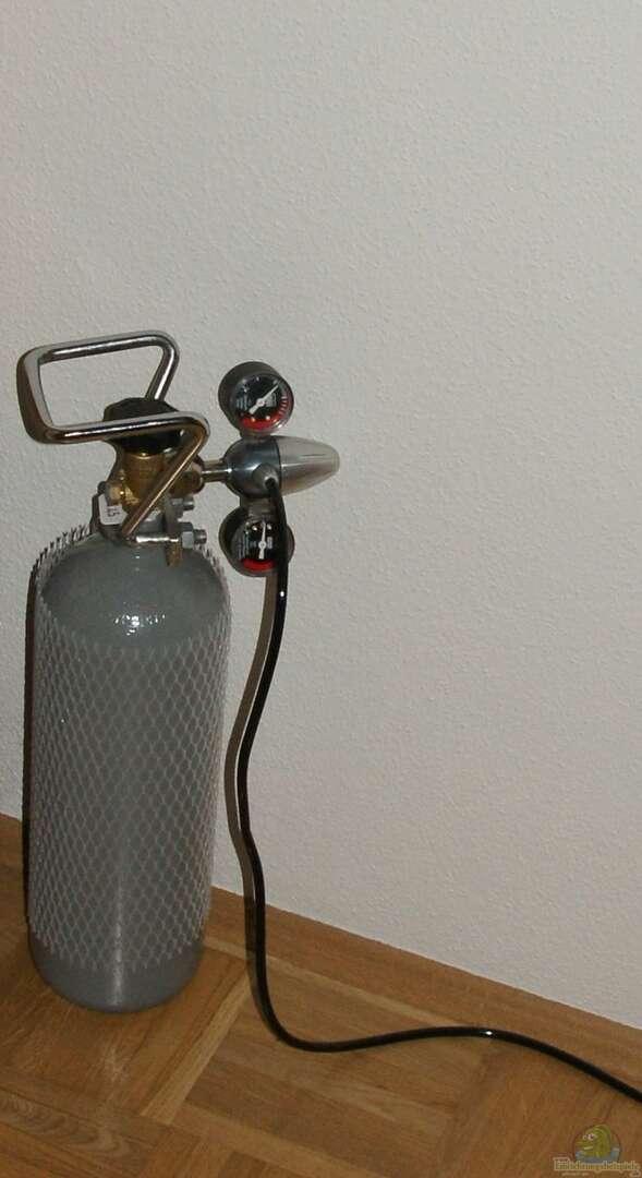 2 kg co2 flasche aus eheim vivaline 126 von aniram. Black Bedroom Furniture Sets. Home Design Ideas