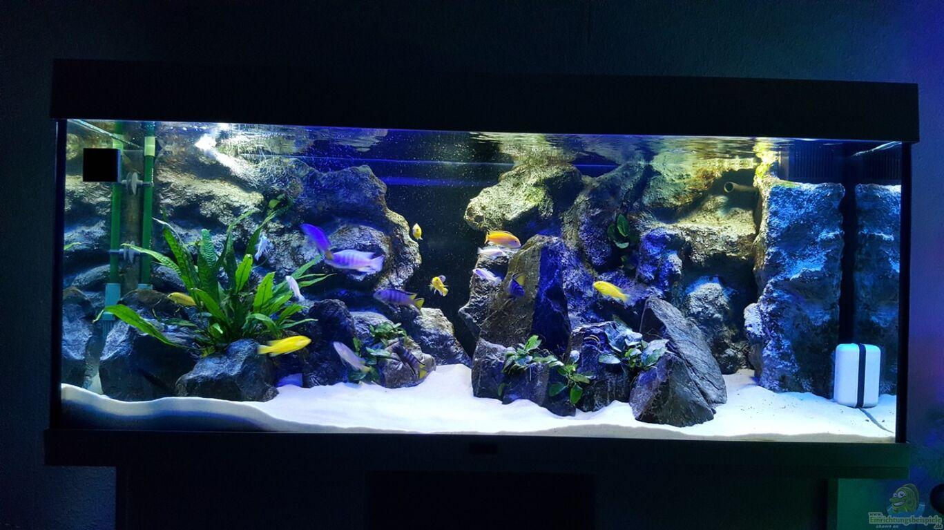 aquarium von chrille1904 becken 32640. Black Bedroom Furniture Sets. Home Design Ideas