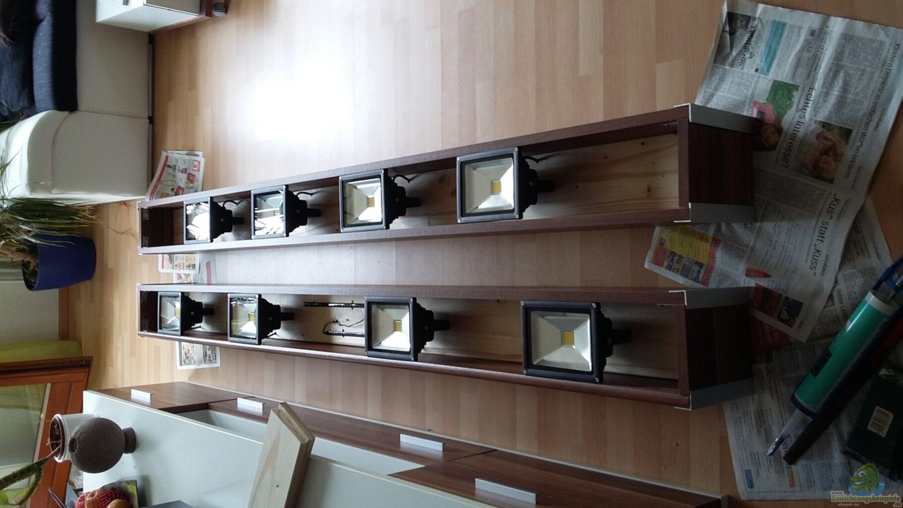 Aquarium von t aquatics wohnzimmer uferzone - Aquarium wohnzimmer ...