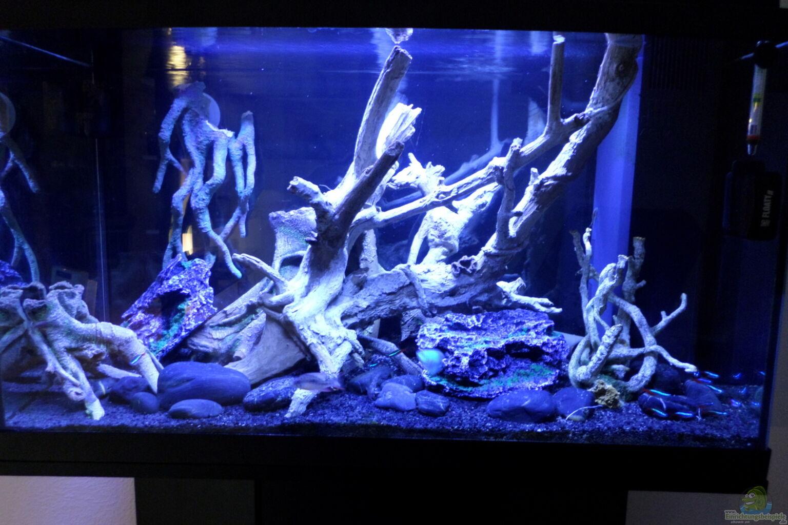 Aquarium von hans hubert becken 32838 for Aquarium becken
