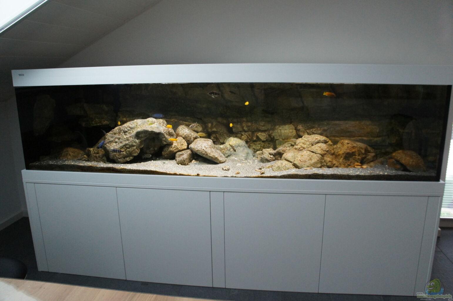 Aquarium von dagloa kaskazini s tank for Aquarium wasserwechsel