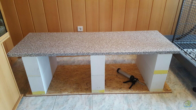 aquarium von mel 540 l malawi rock. Black Bedroom Furniture Sets. Home Design Ideas