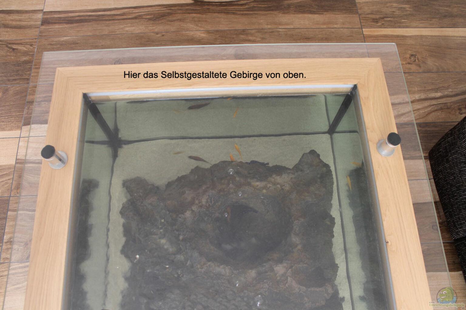 Aquarium von Florian Böhling Couchtisch Aquarium