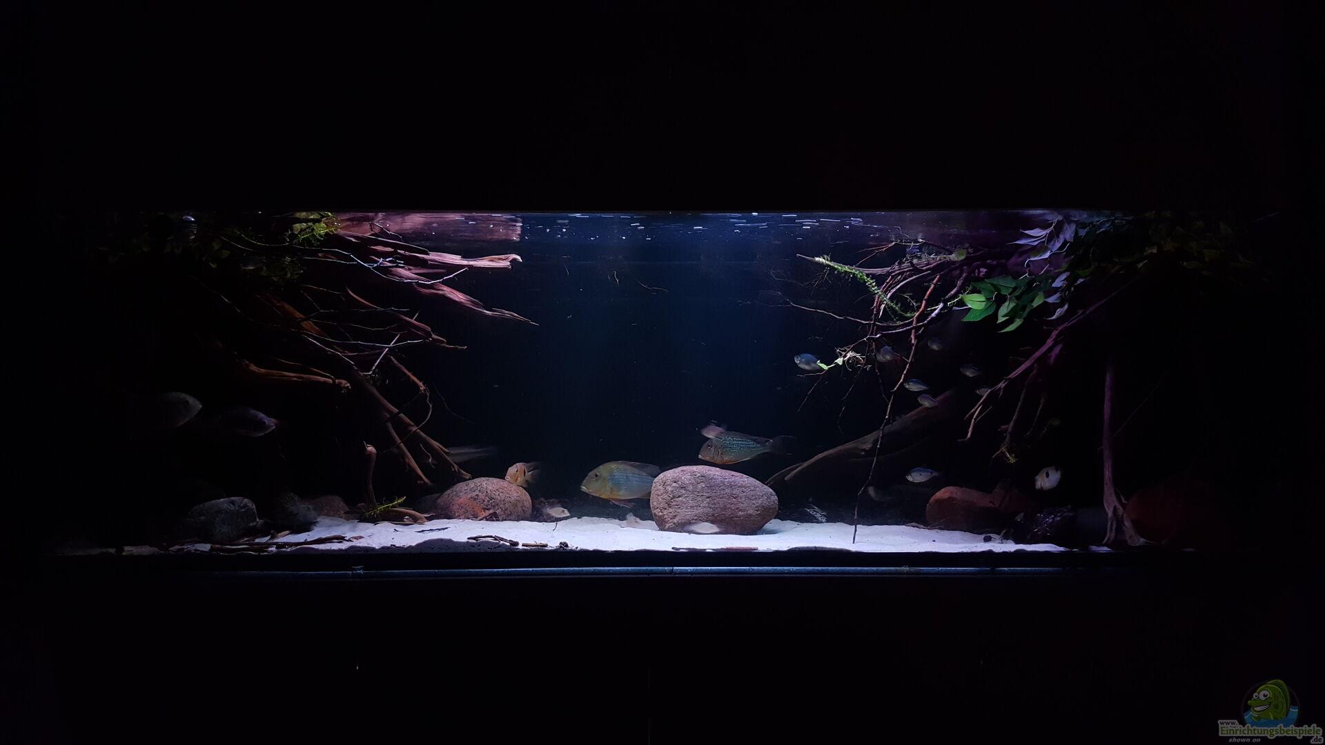 s damerika aquanaut 33297 amazonas klarwasser nebenfluss nur noch als beisp. Black Bedroom Furniture Sets. Home Design Ideas