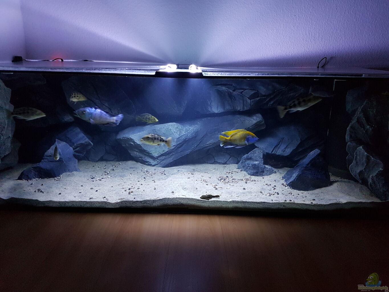 mit beleuchtung aus malawi paradise von tobi w. Black Bedroom Furniture Sets. Home Design Ideas