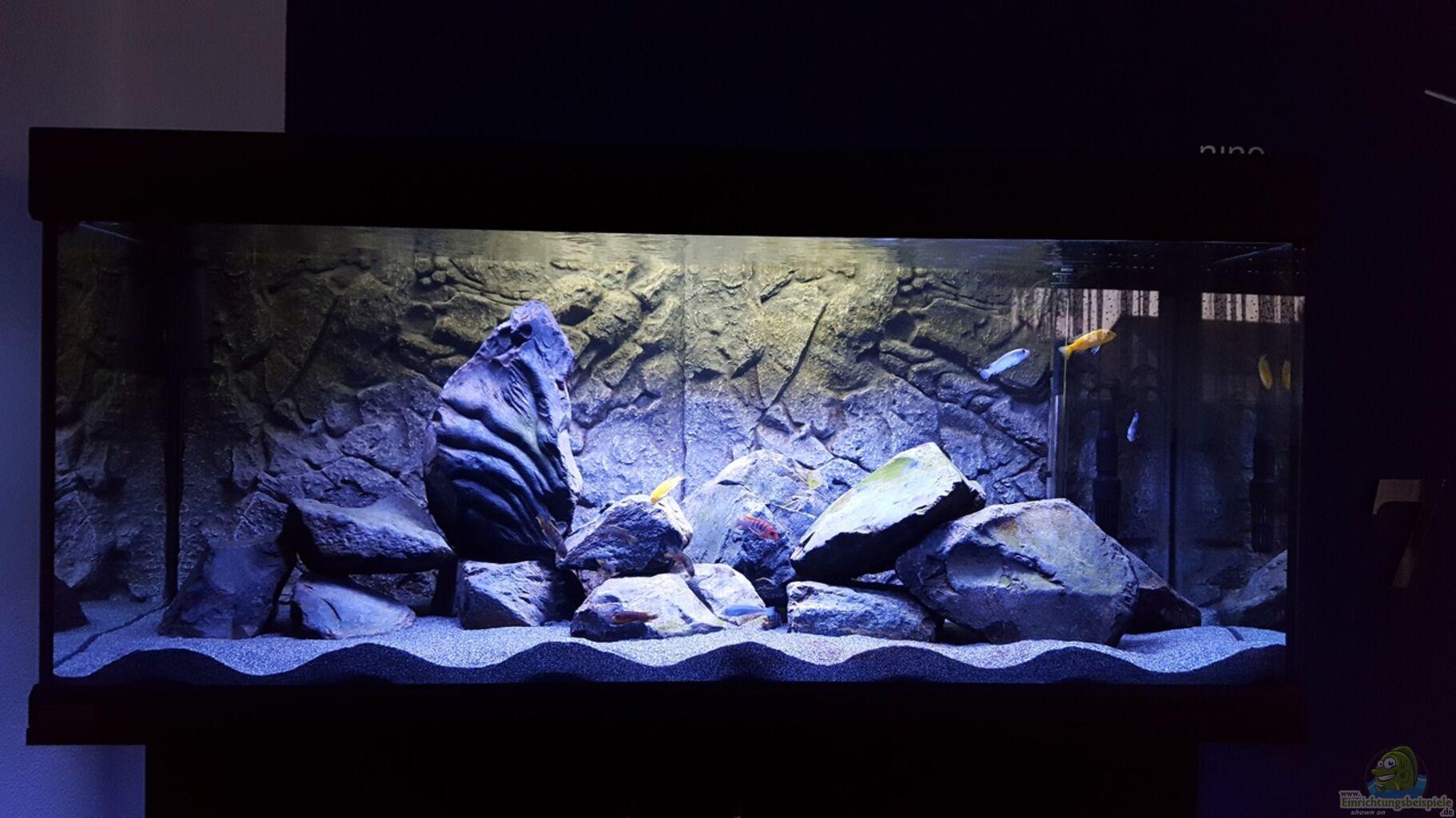 aquarium von s g black stone tank. Black Bedroom Furniture Sets. Home Design Ideas